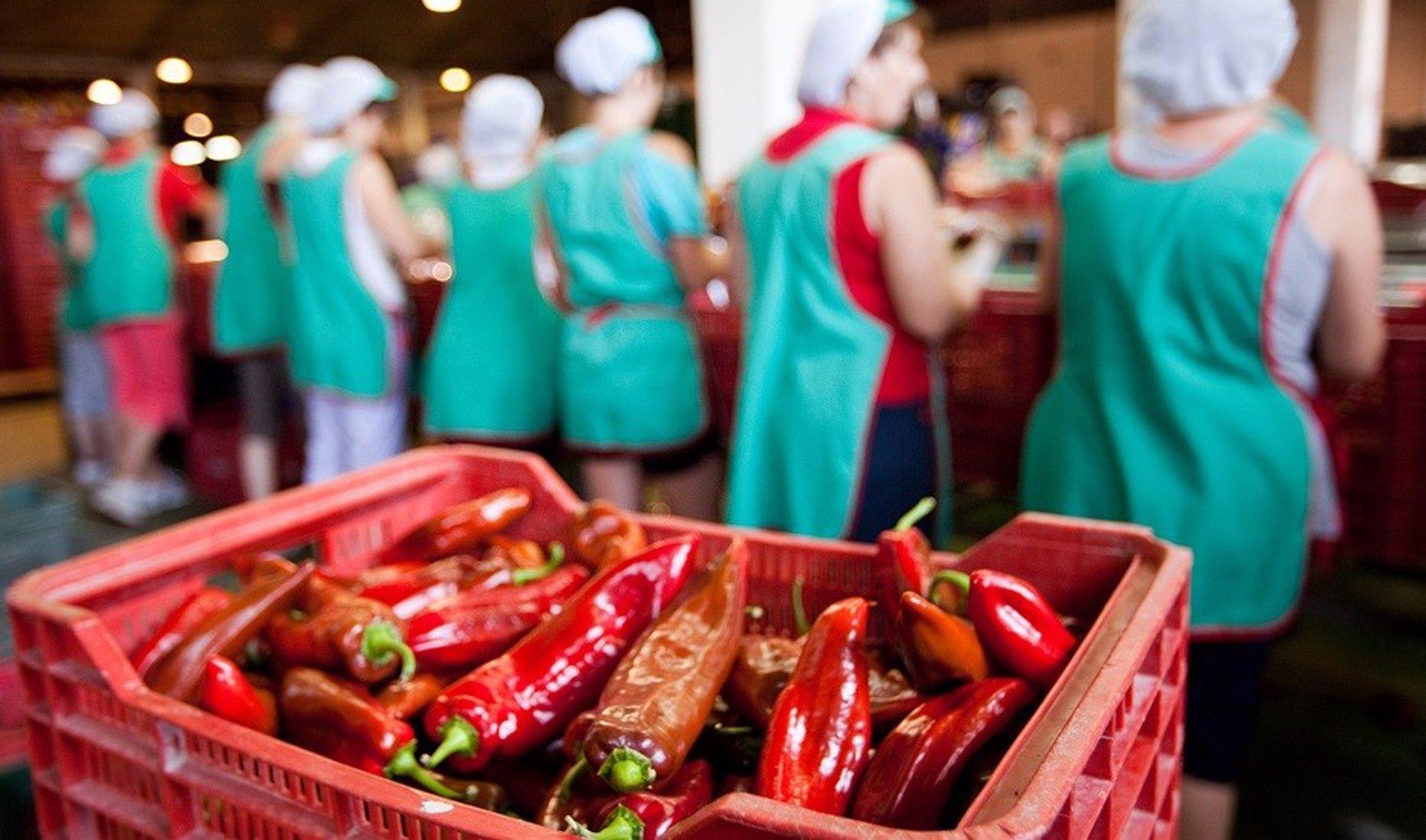 Junta advierte que el efecto de la pandemia en el paro «puede ser mayor» por los 121.398 trabajadores aún en ERTE