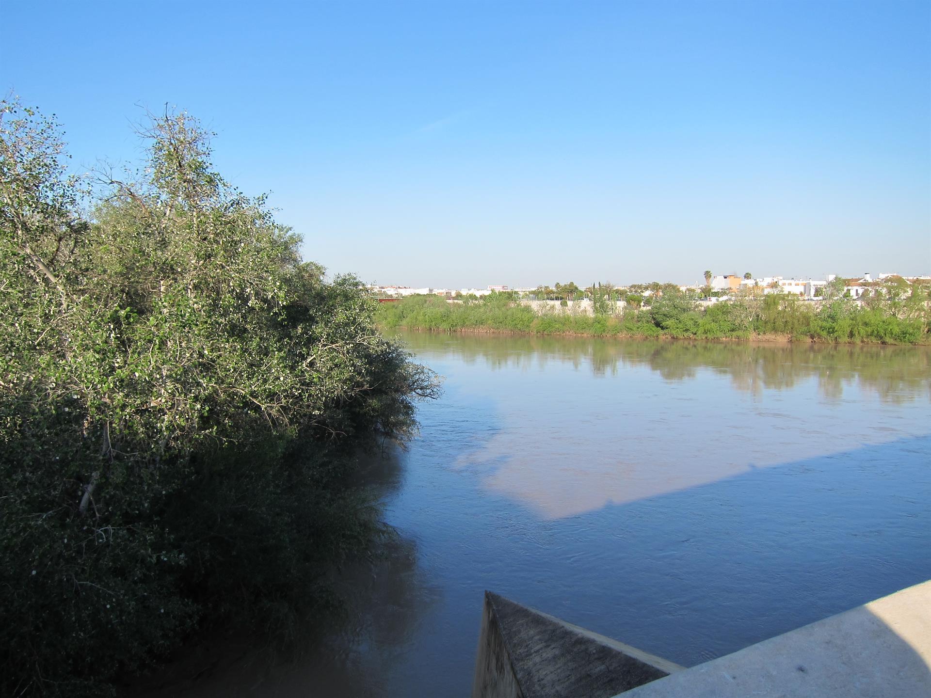 Las precipitaciones de enero en la cuenca del Guadalquivir se sitúan un 26% por encima de la media histórica