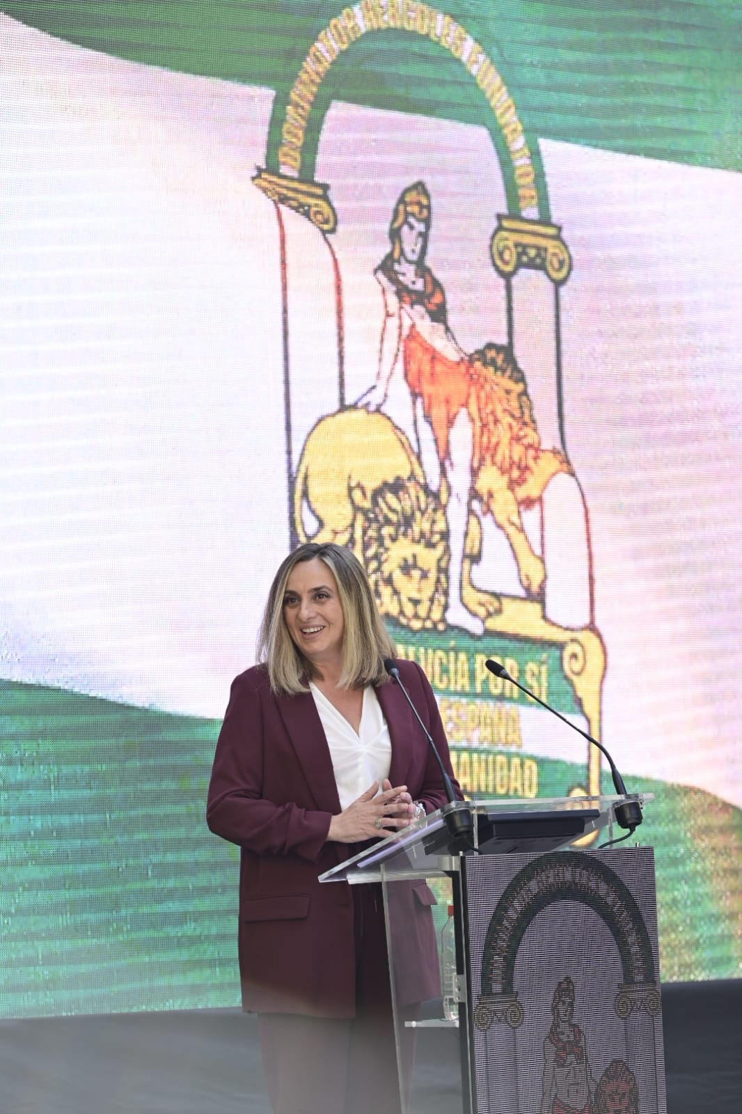 Carazo destaca «la fuerza y el liderazgo» de la provincia en la entrega de las Banderas de Andalucía