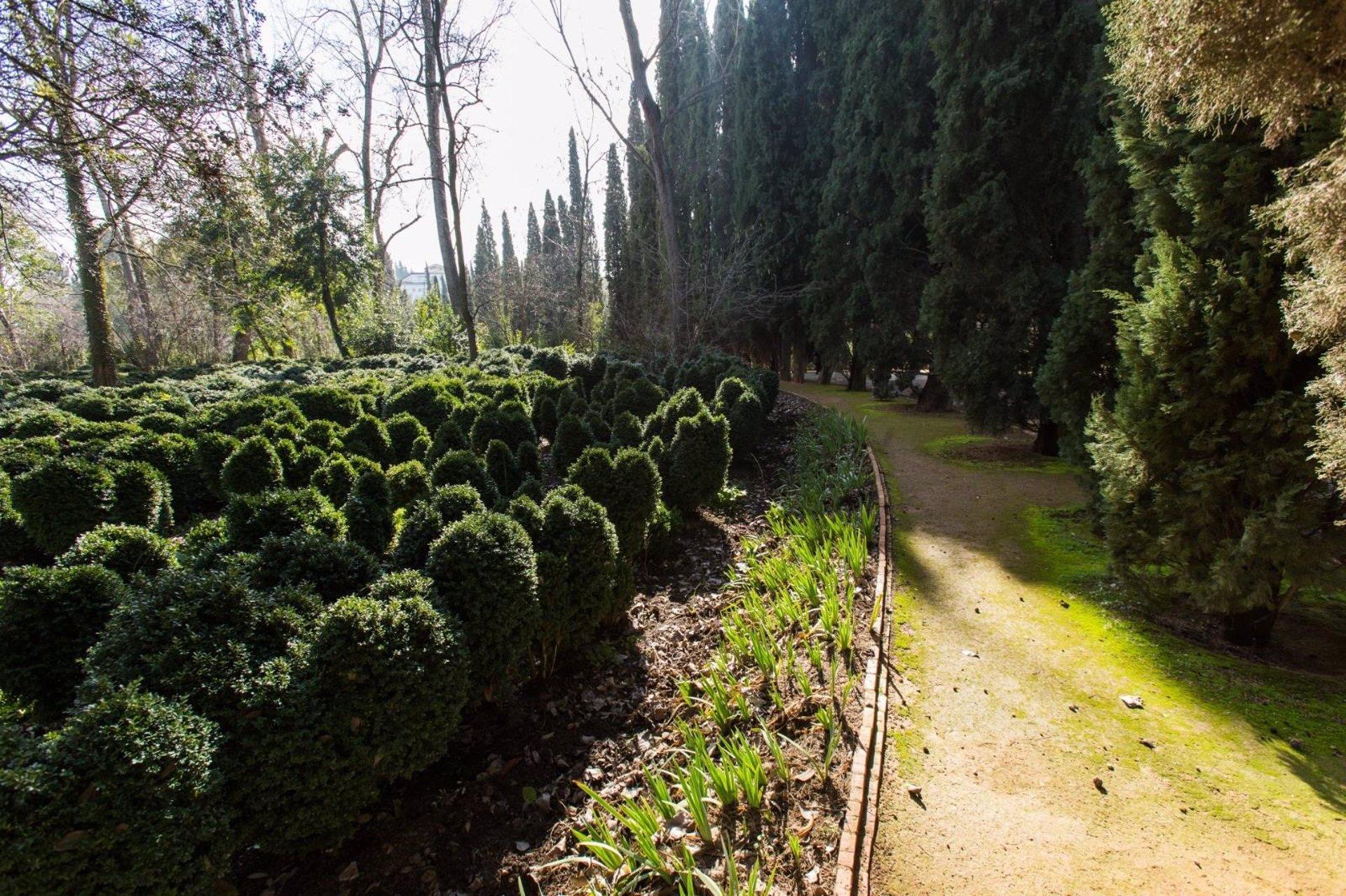 La Alhambra amplía sus recursos digitales para dar a conocer sus torres y jardines