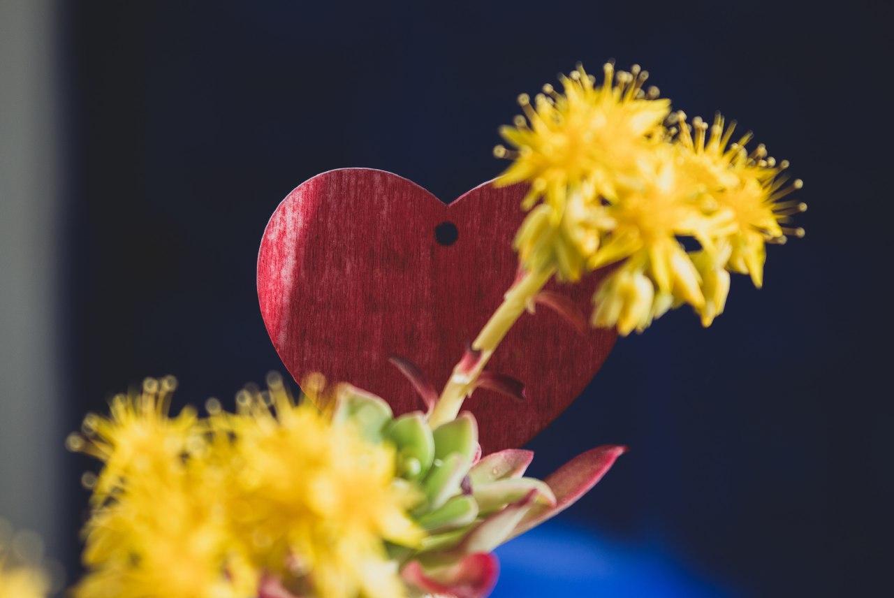 """La nueva edición del taller """"Protege-t de San Valentín"""" analiza el modelo de amor romántico"""
