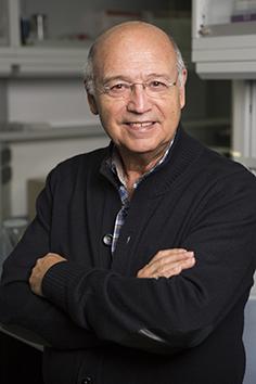 El catedrático de la UGR Ángel Gil se convierte en el segundo español en 42 años que logra el premio «Sir David Cuthberson Lecture Award»