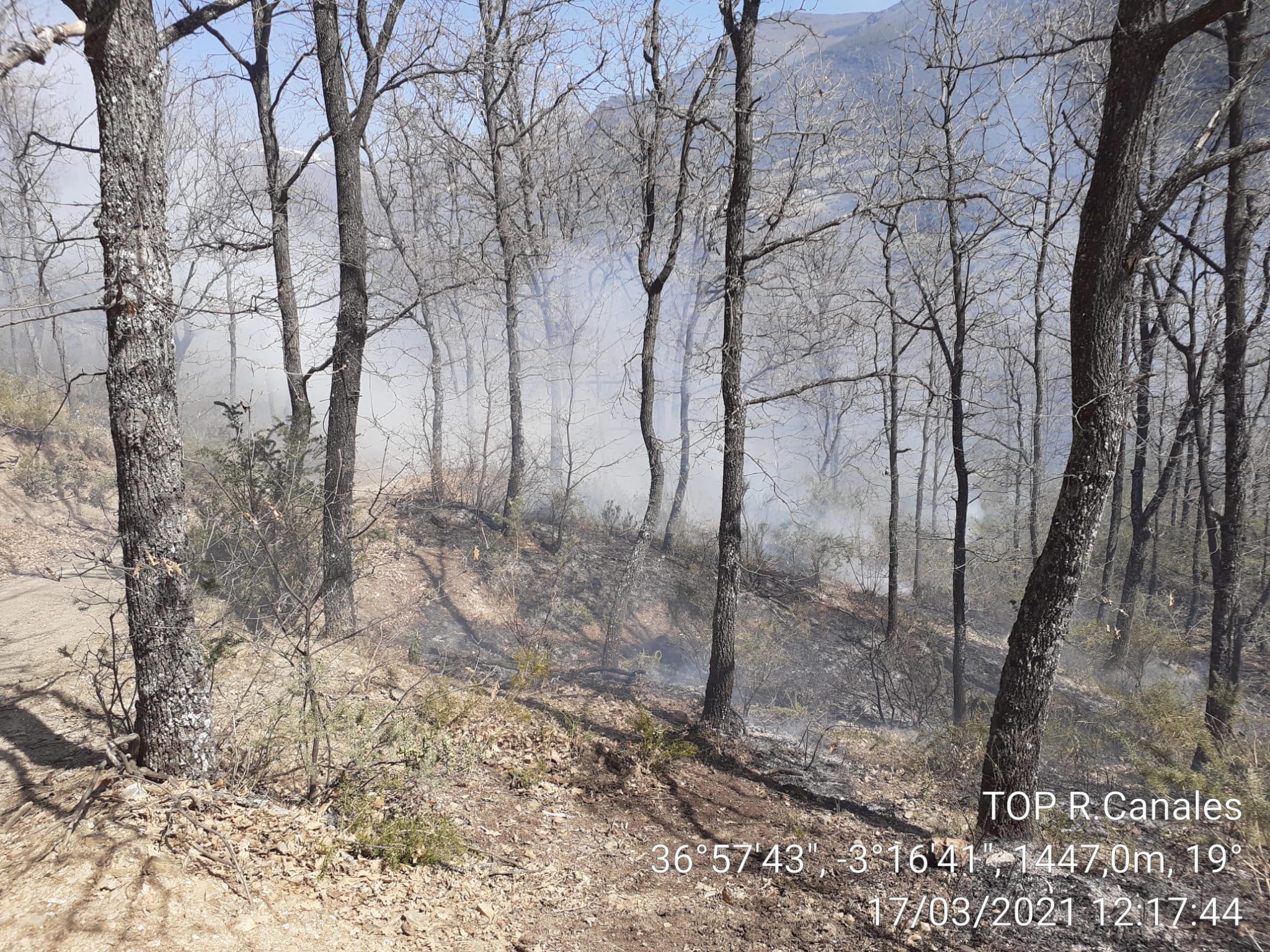 Controlado el incendio en el paraje Robledal de Busquístar