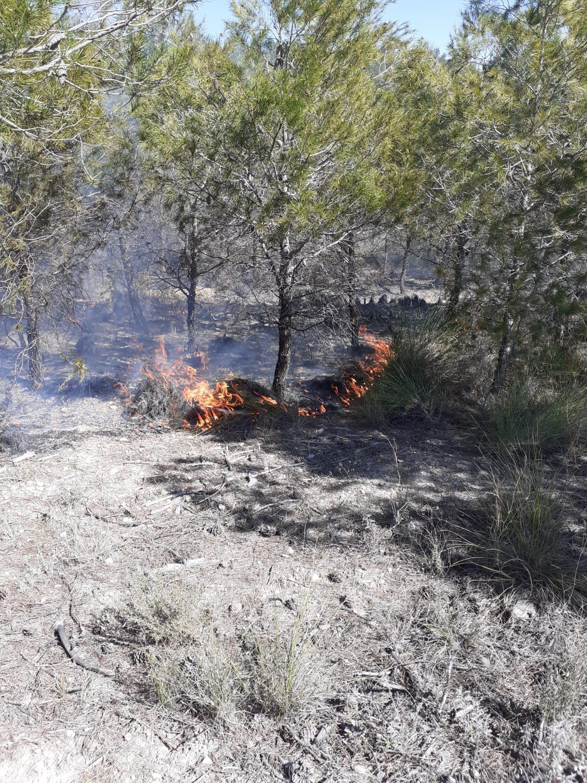 Extinguido un incendio forestal declarado en Castilléjar