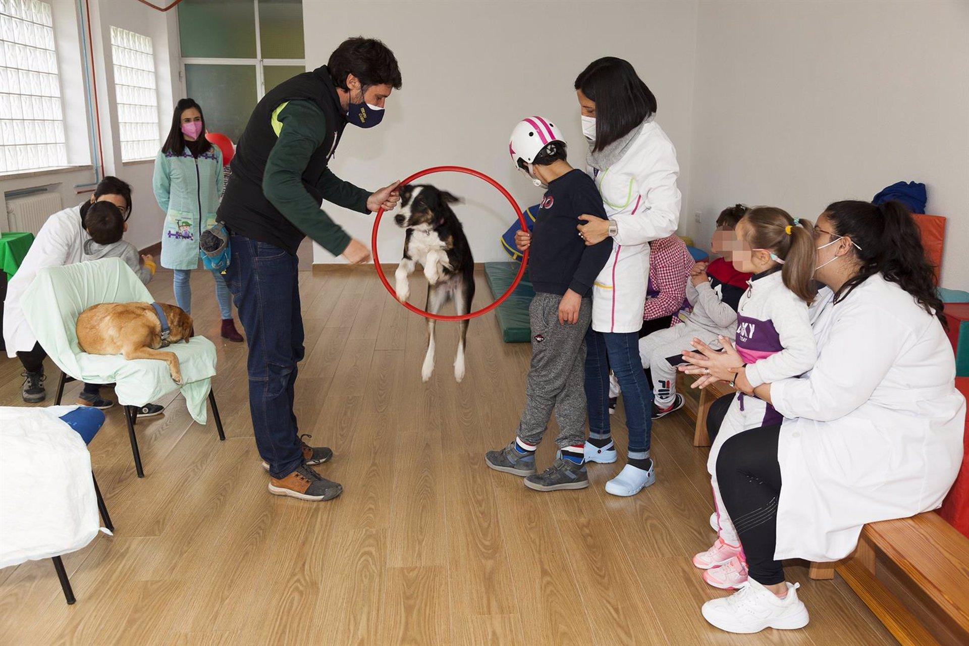 Fomentan la autoestima de alumnos con diversidad funcional con una terapia con perros