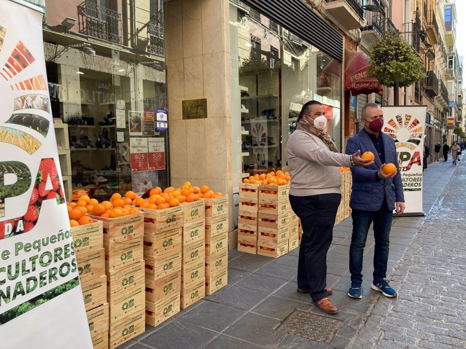 Agricultores (UPA) reparten cajas de naranjas en los comercios para denunciar los bajos precios en origen