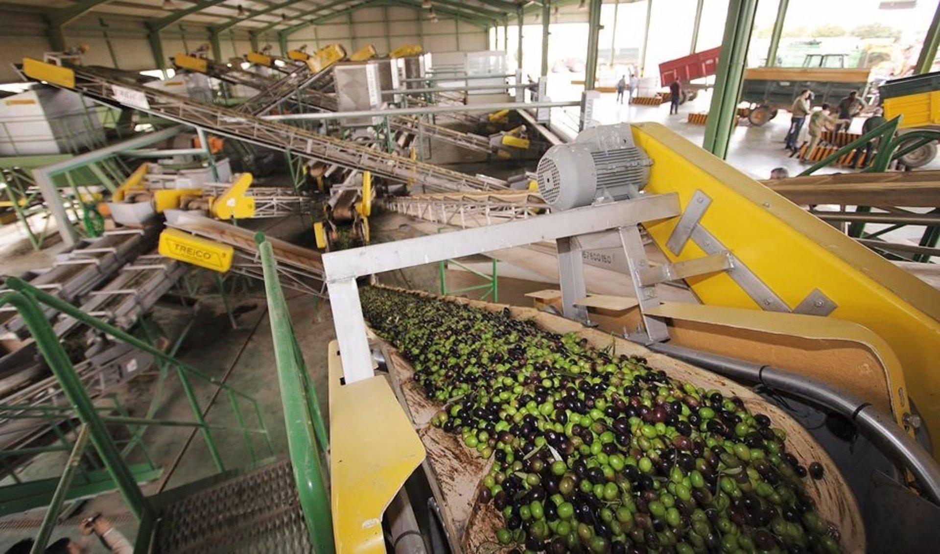 UPA-A destaca la «buena salud» del mercado del aceite de oliva con 863.000 toneladas vendidas en seis meses
