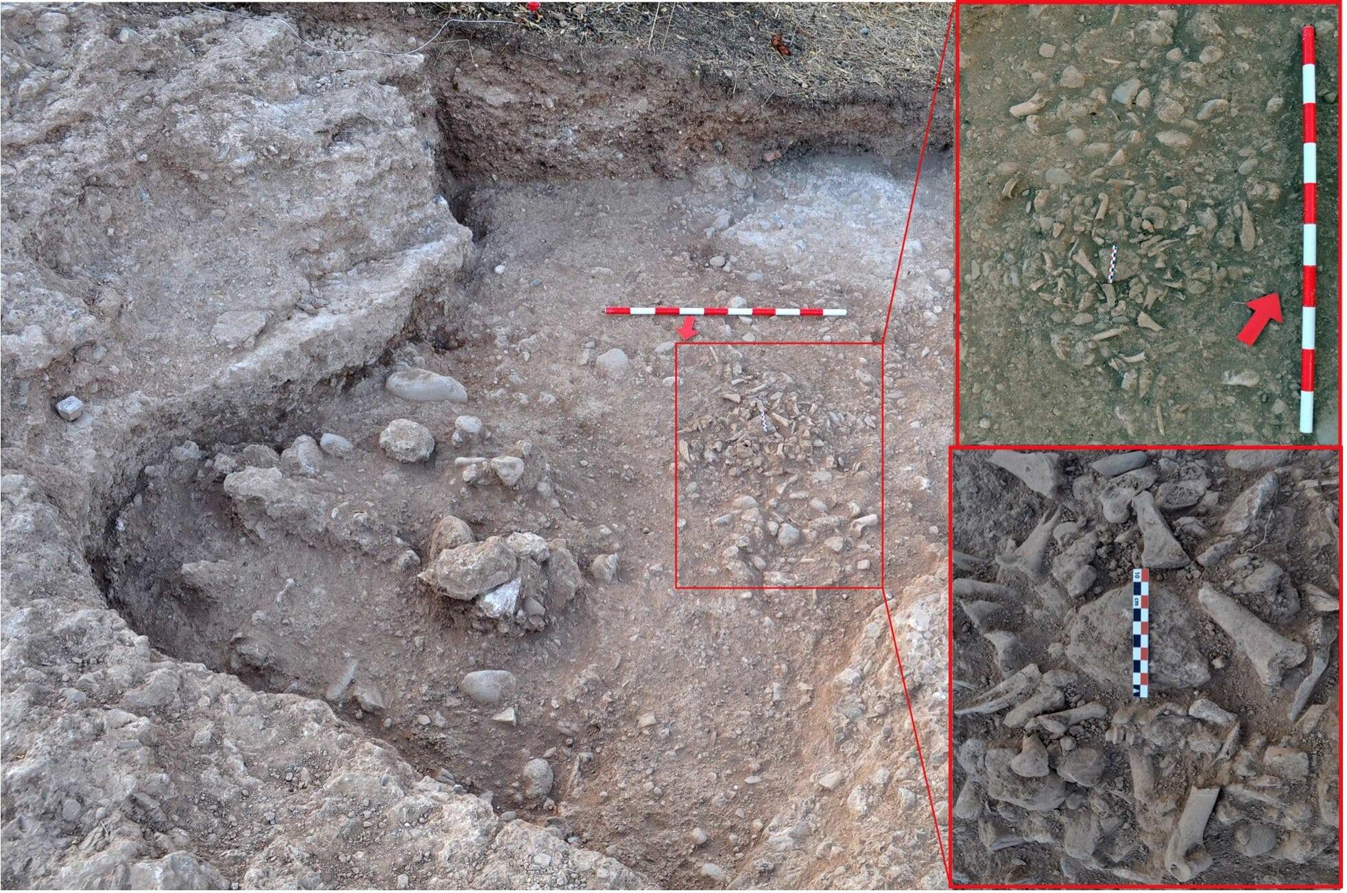 El análisis de un basurero del siglo XVI demuestra que los moriscos mantenían hábitos musulmanes pese a tenerlo prohibido