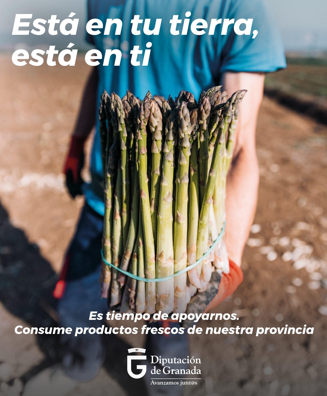Inician una campaña para fomentar el consumo de frutas y verduras de temporada de Granada