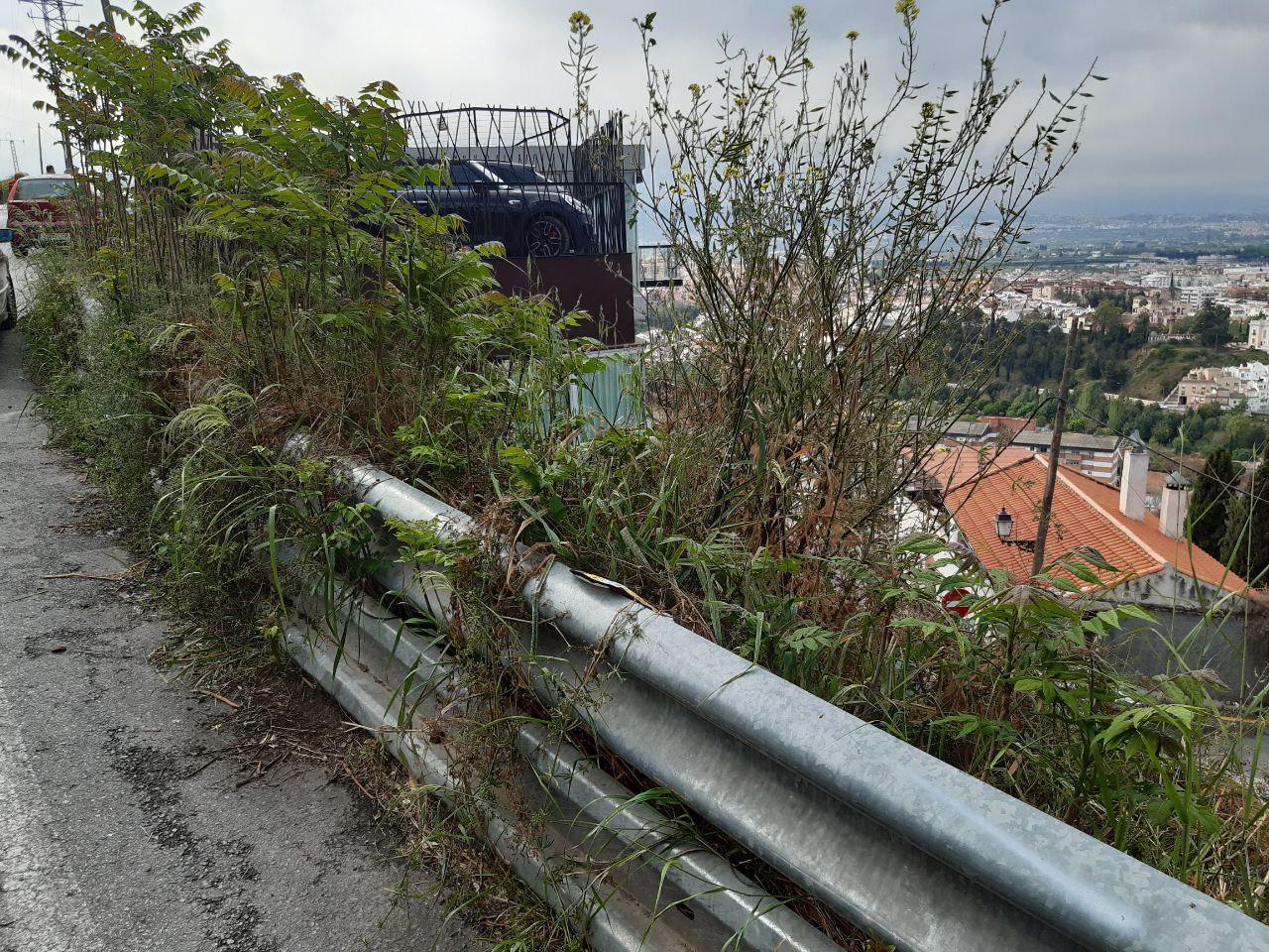 Podemos-IU denuncia el abandono que sufre el Barranco del Abogado