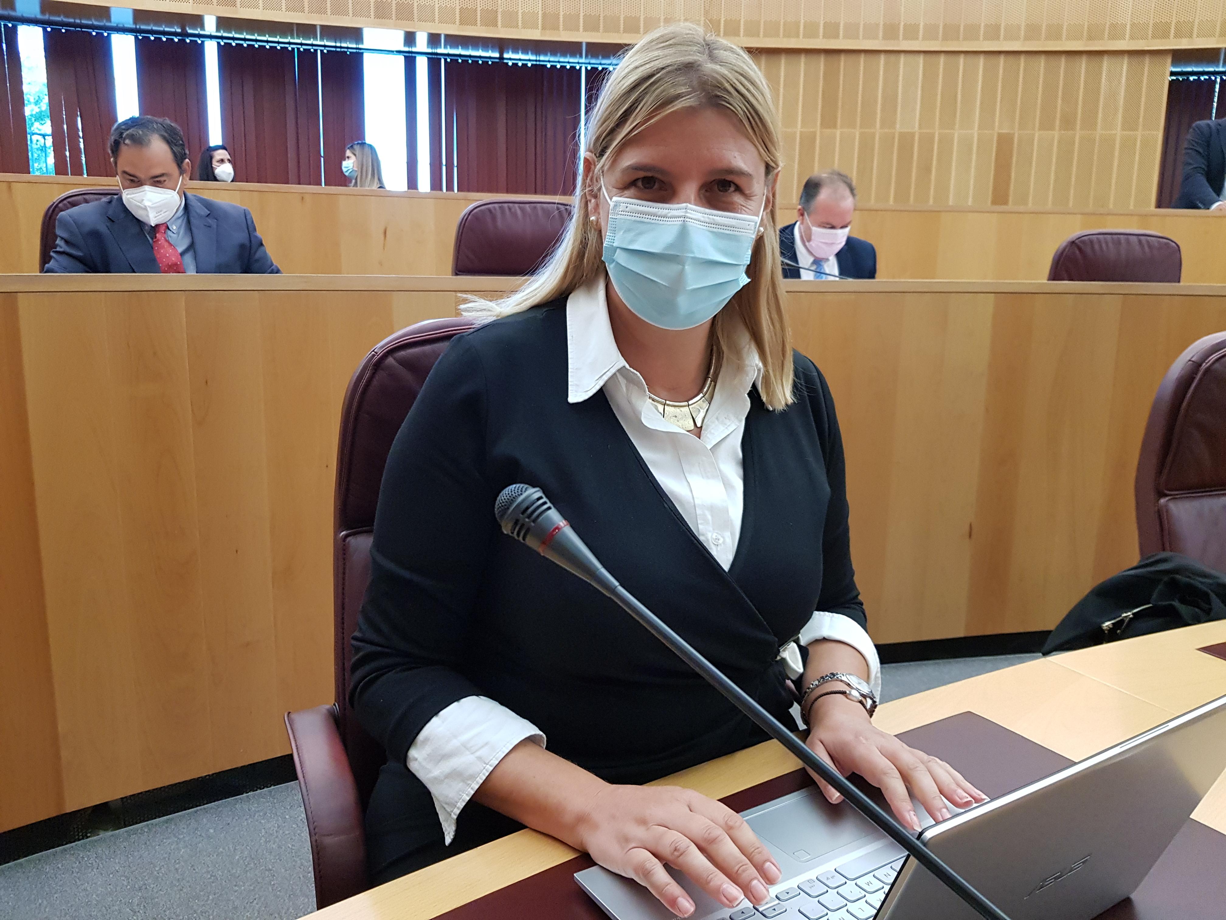 El PP critica que la Izquierda en Diputación dedique parte de un pleno a la Ley de Memoria Histórica