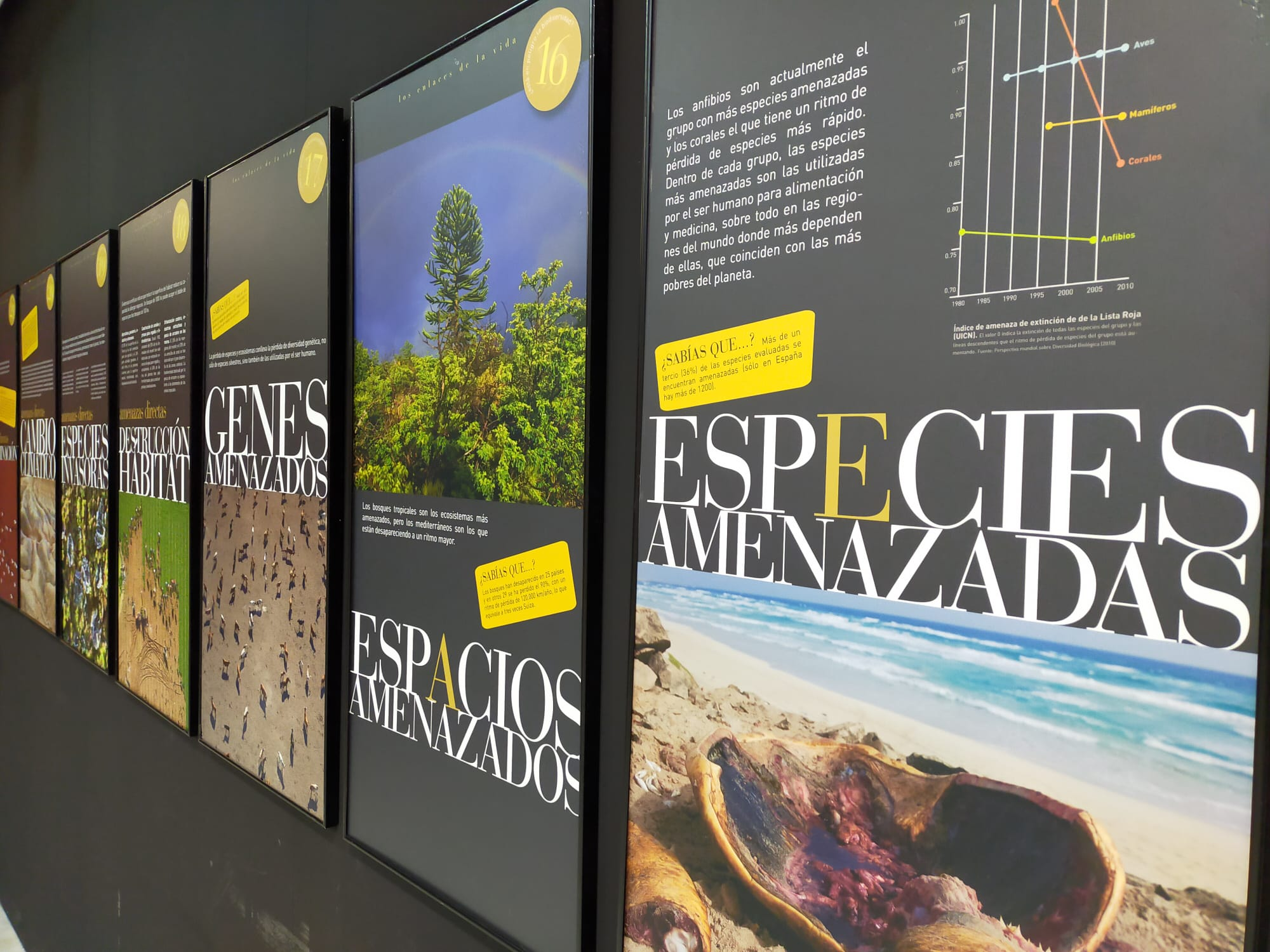 La Casa de la Cultura de Monachil acoge una exposición fotográfica sobre biodiversidad