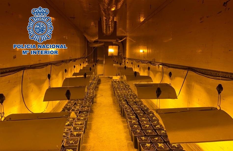 Desmantelan una plantación de marihuana oculta en el interior del remolque de un tráiler