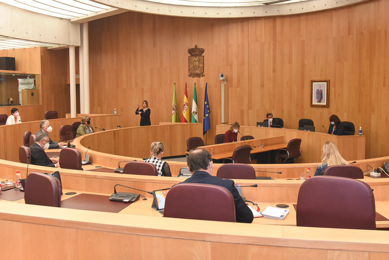 El Pleno provincial de Diputación tramita la renuncia de Pedro Fernández