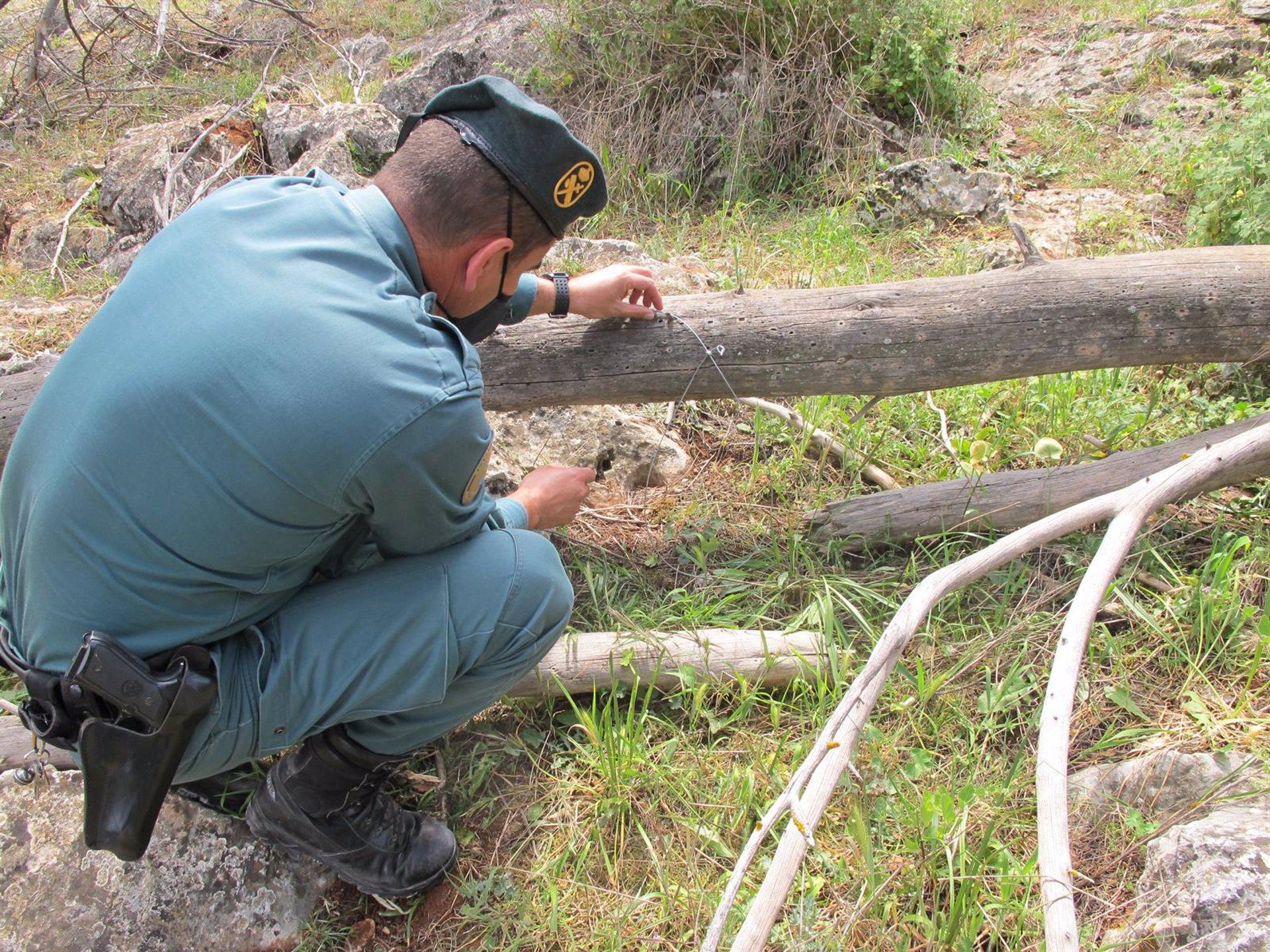 Investigados dos cazadores de Algarinejo por el uso de artes de caza prohibidas