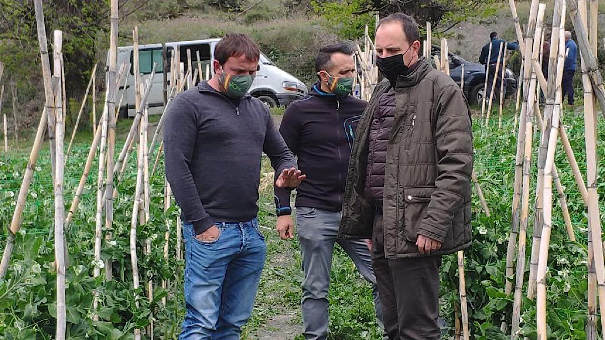 Vox defiende su «utilidad» y vincula la «mejora» de situación de agricultores de la Alpujarra a una de sus PNL