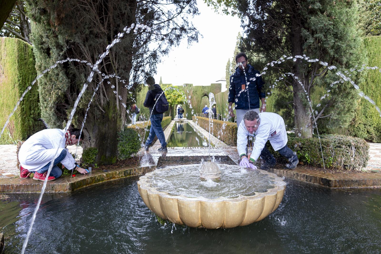 Científicos identifican la variedad de microalgas que habitan las fuentes monumentales de la Alhambra y el Generalife