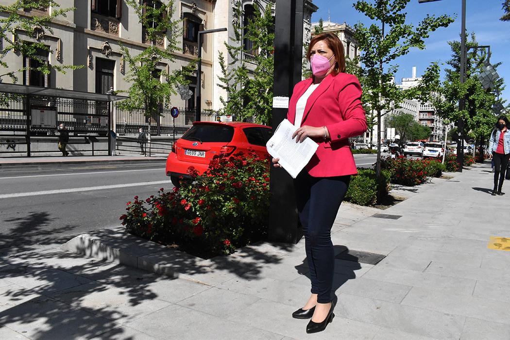 IU registra en los Ayuntamientos propuestas para crear Consejos Municipales de Salud para la mujer