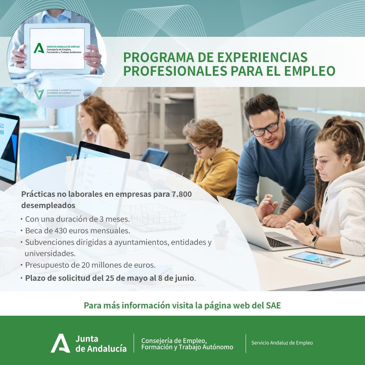 Empleo pone en marcha un programa que facilitará prácticas profesionales en empresas a 800 desempleados