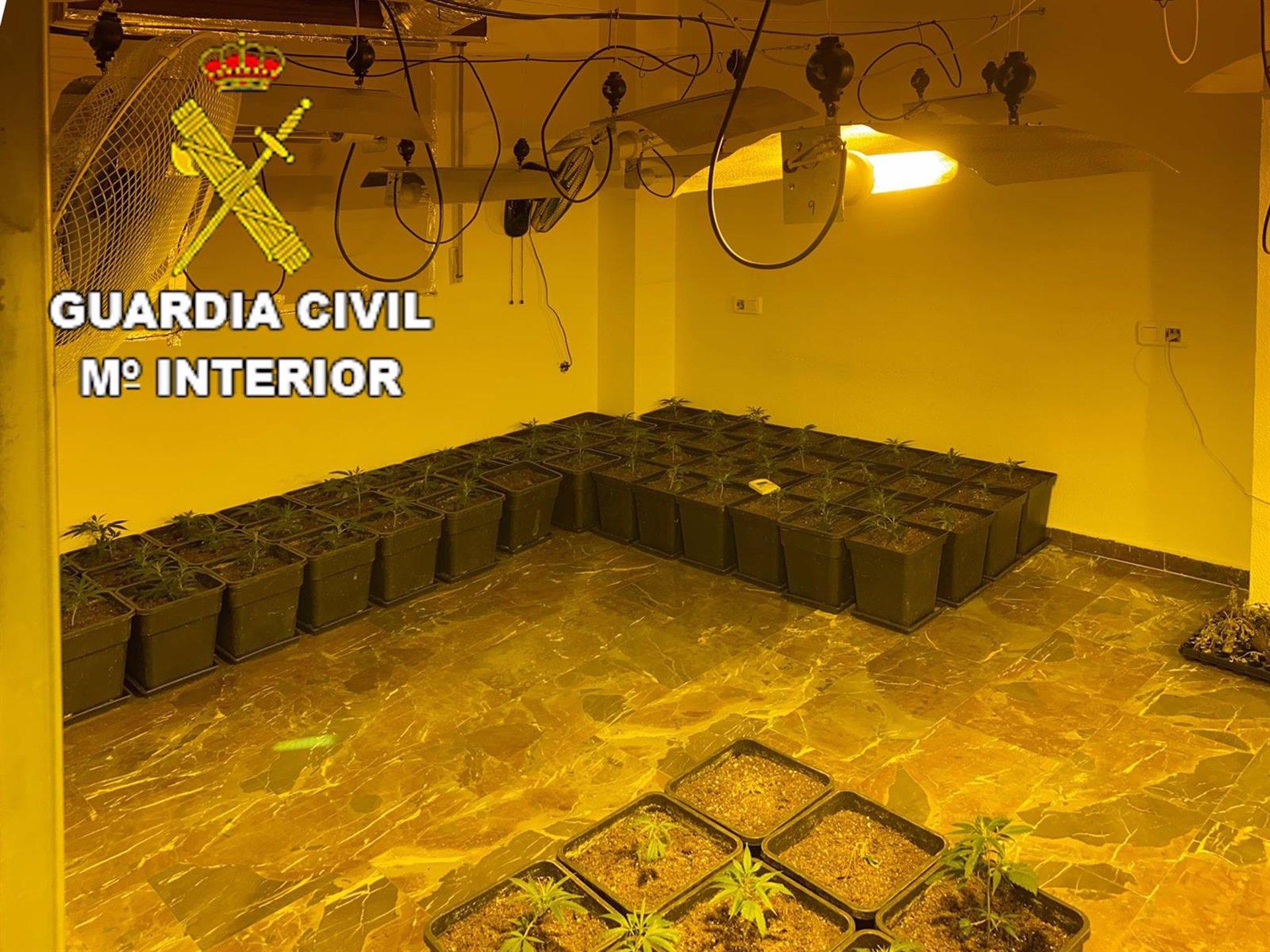 Descubren dos centros de producción de marihuana en Maracena y Santa Fe