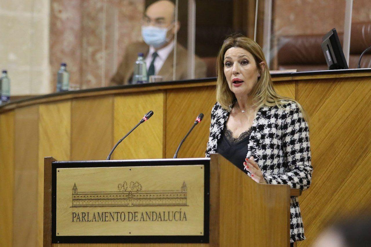 """Ciudadanos alaba las """"continuas iniciativas"""" de la Junta para """"volver a la senda de creación de empleo"""" en Granada"""