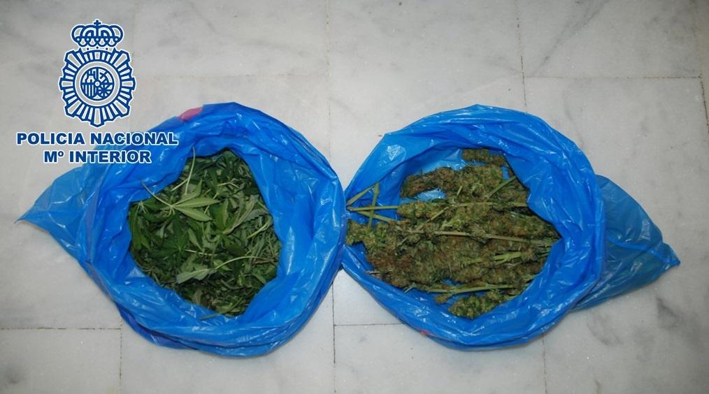 Detenidos en Motril cinco varones como presuntos autores de dos delitos de tráfico de sustancias estupefacientes