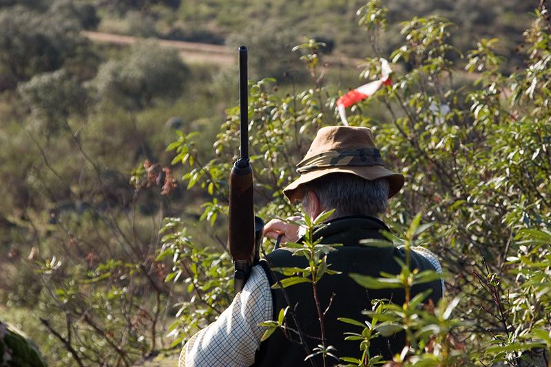 Desarrollo Sostenible publica los períodos hábiles de caza para 2021-2022