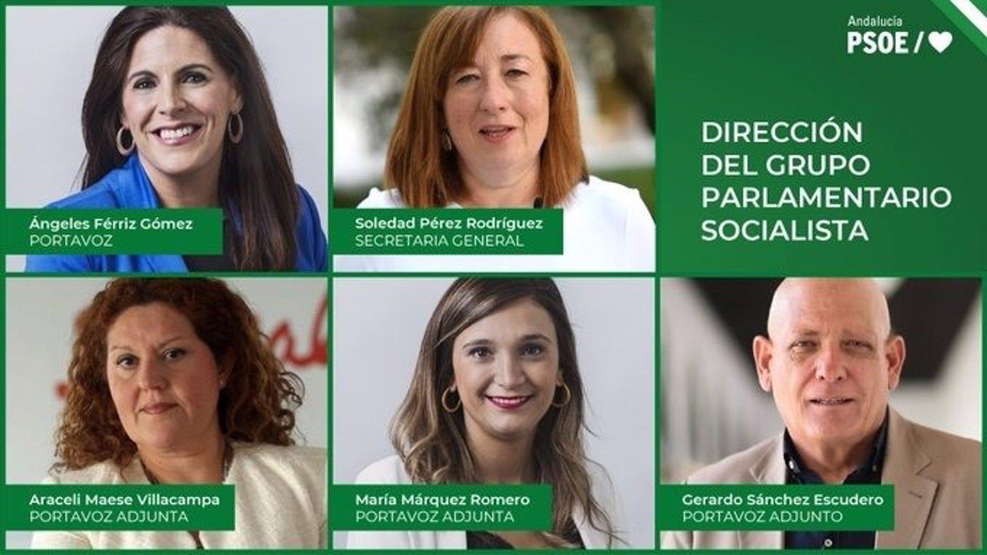 La Ejecutiva del PSOE-A acuerda por unanimidad la nueva dirección del Grupo Parlamentario Socialista