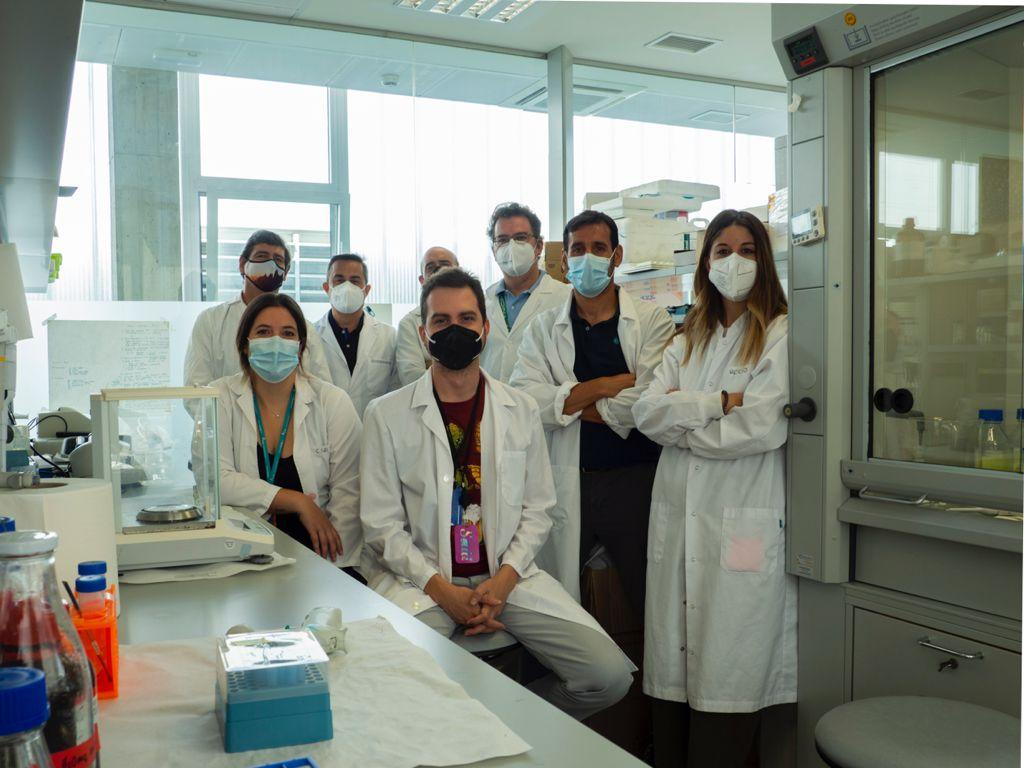 Diseñan nanocápsulas de aceite de oliva inteligentes eficaces frente a células madre cancerígenas y útiles en el seguimiento del cáncer de páncreas