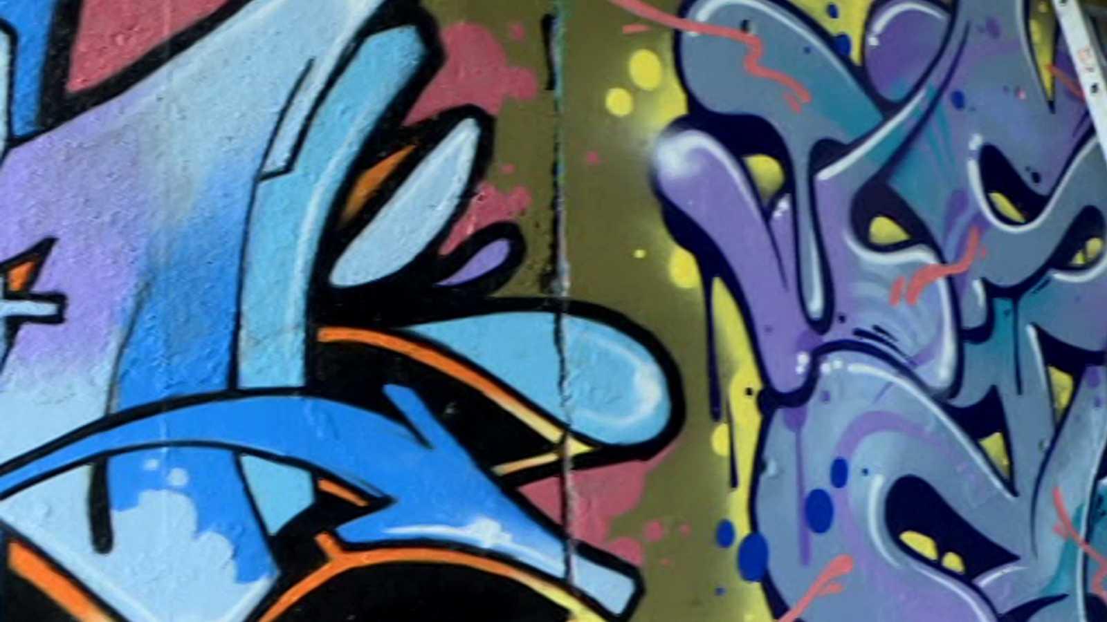 Respaldo unánime de la corporación de Granada para atajar las pintadas vandálicas
