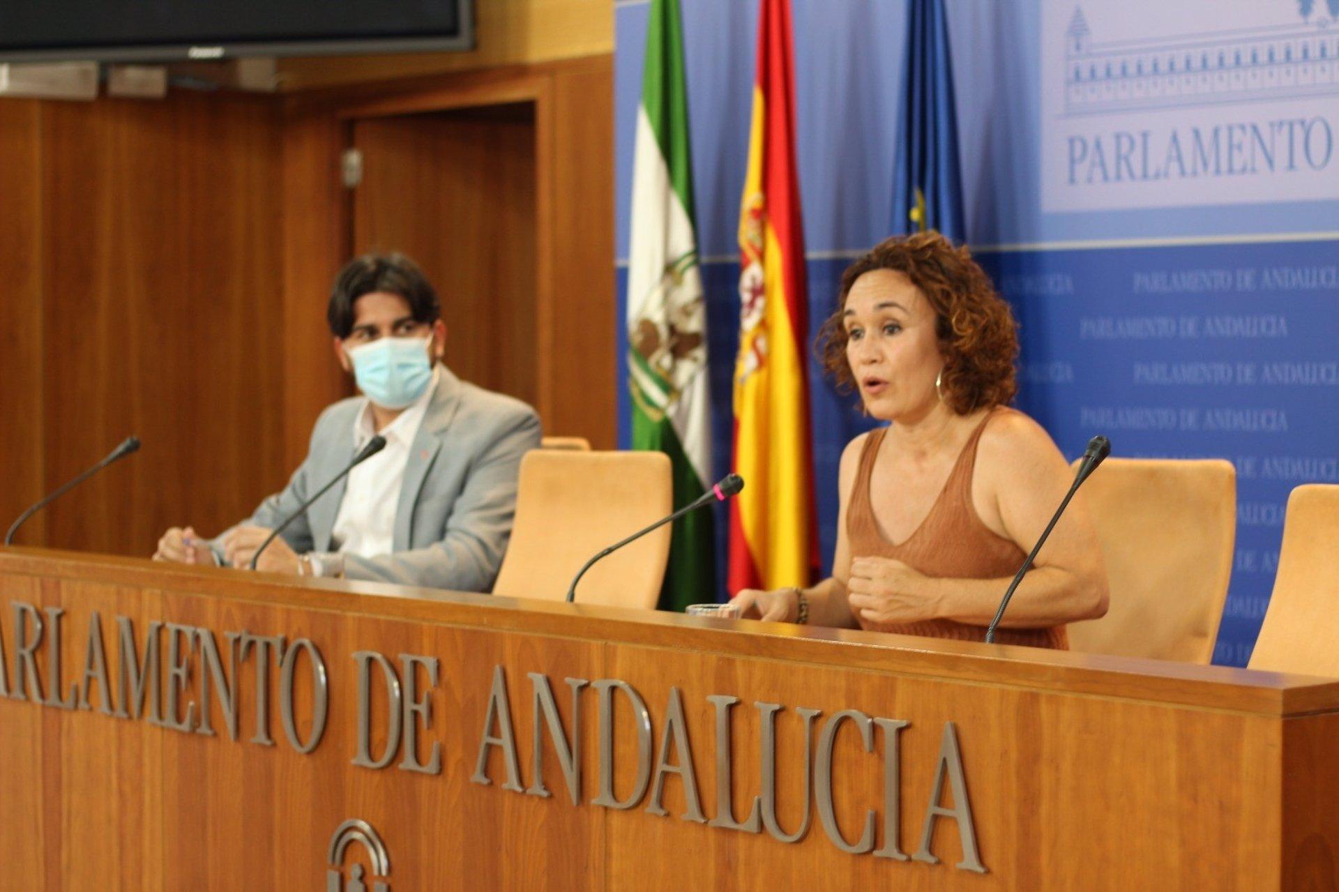 Naranjo (IU) cree «espéctaculo lamentable» la crisis del Ayuntamiento de Granada porque «se anteponen sillones»