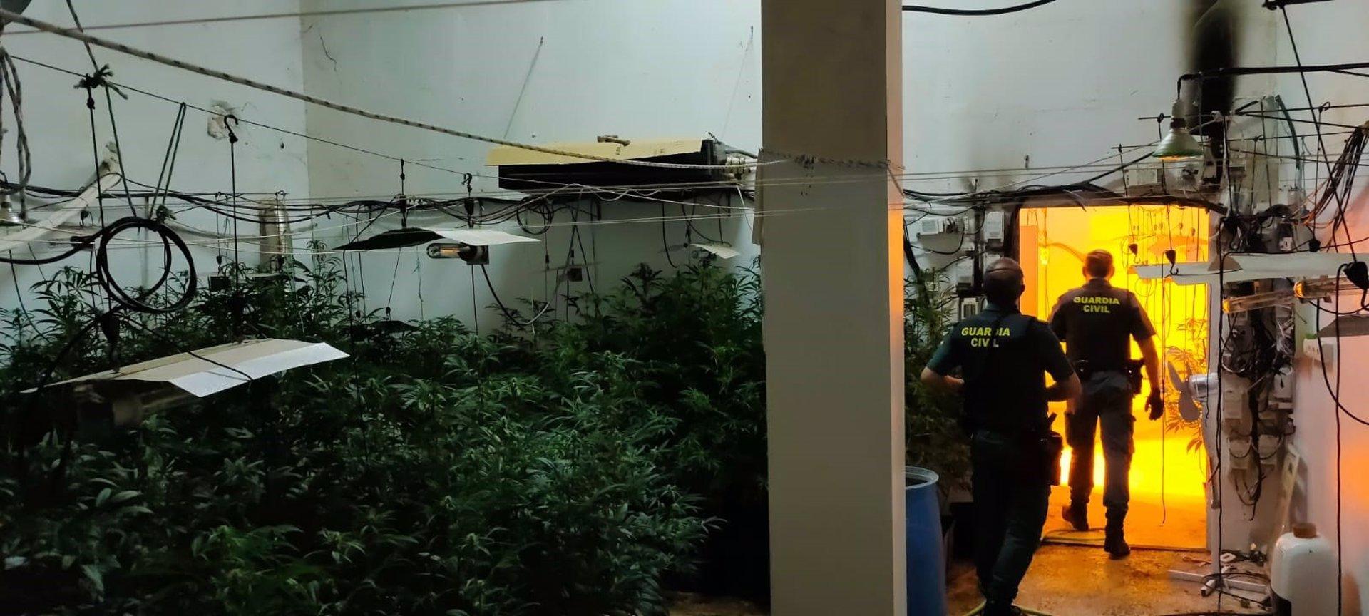 Dos detenidos acusados de montar un centro producción de marihuana en un chalé de Las Gabias