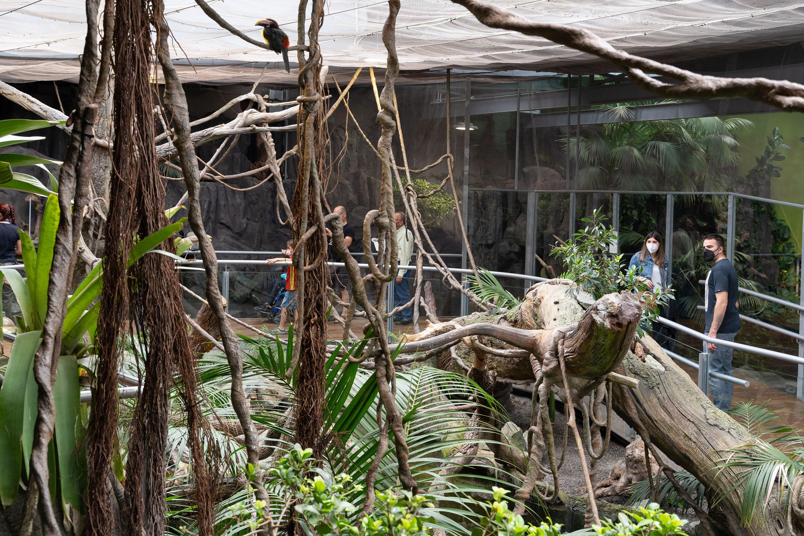 El BioDomo cumple 5 años y se consolida como uno de los principales atractivos del Parque de las Ciencias