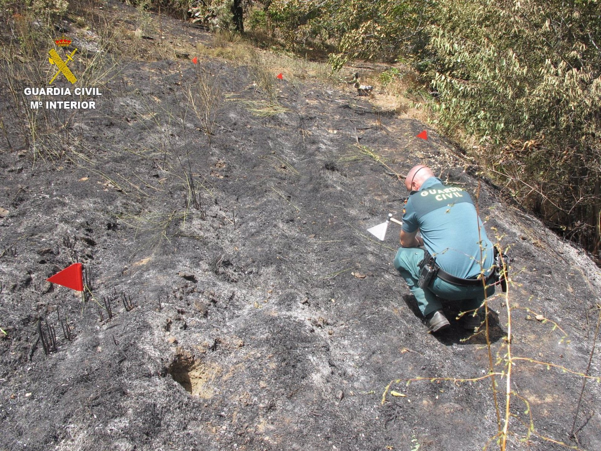 La Guardia Civil investiga a una persona por el incendio forestal en Güéjar Sierra