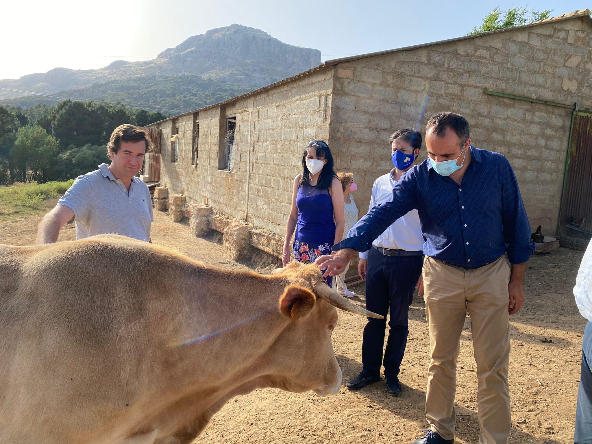 """Rodríguez muestra el """"apoyo incondicional"""" del PP al sector agro-ganadero de la provincia"""
