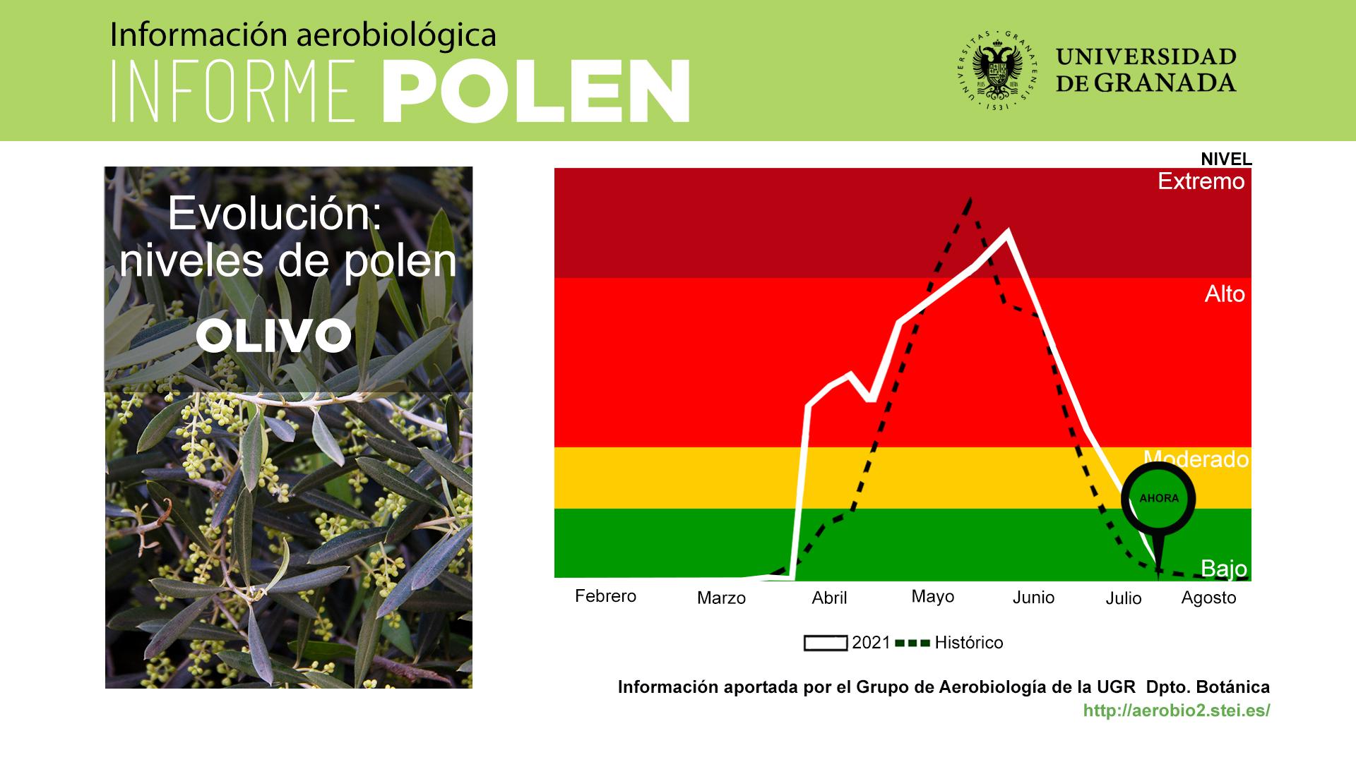 Agosto será un mes con bajo nivel de polen en la atmósfera de Granada