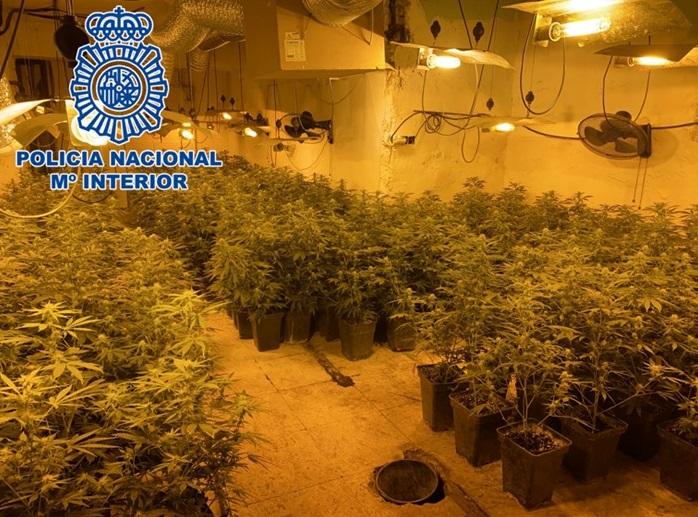 La Policía Nacional ha realizado durante el mes de junio 23 operaciones antidroga en Granada y Motril