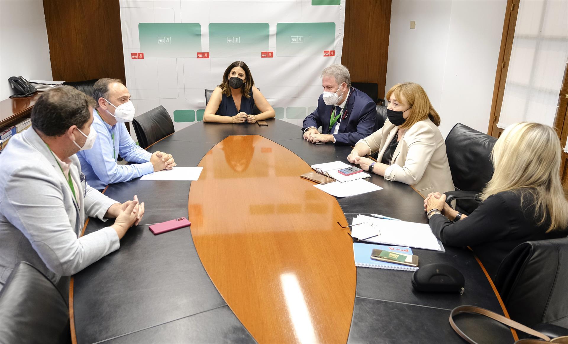 El PSOE denuncia «la situación límite» de la dependencia, que atribuye a «abandono y dejadez» de la Junta