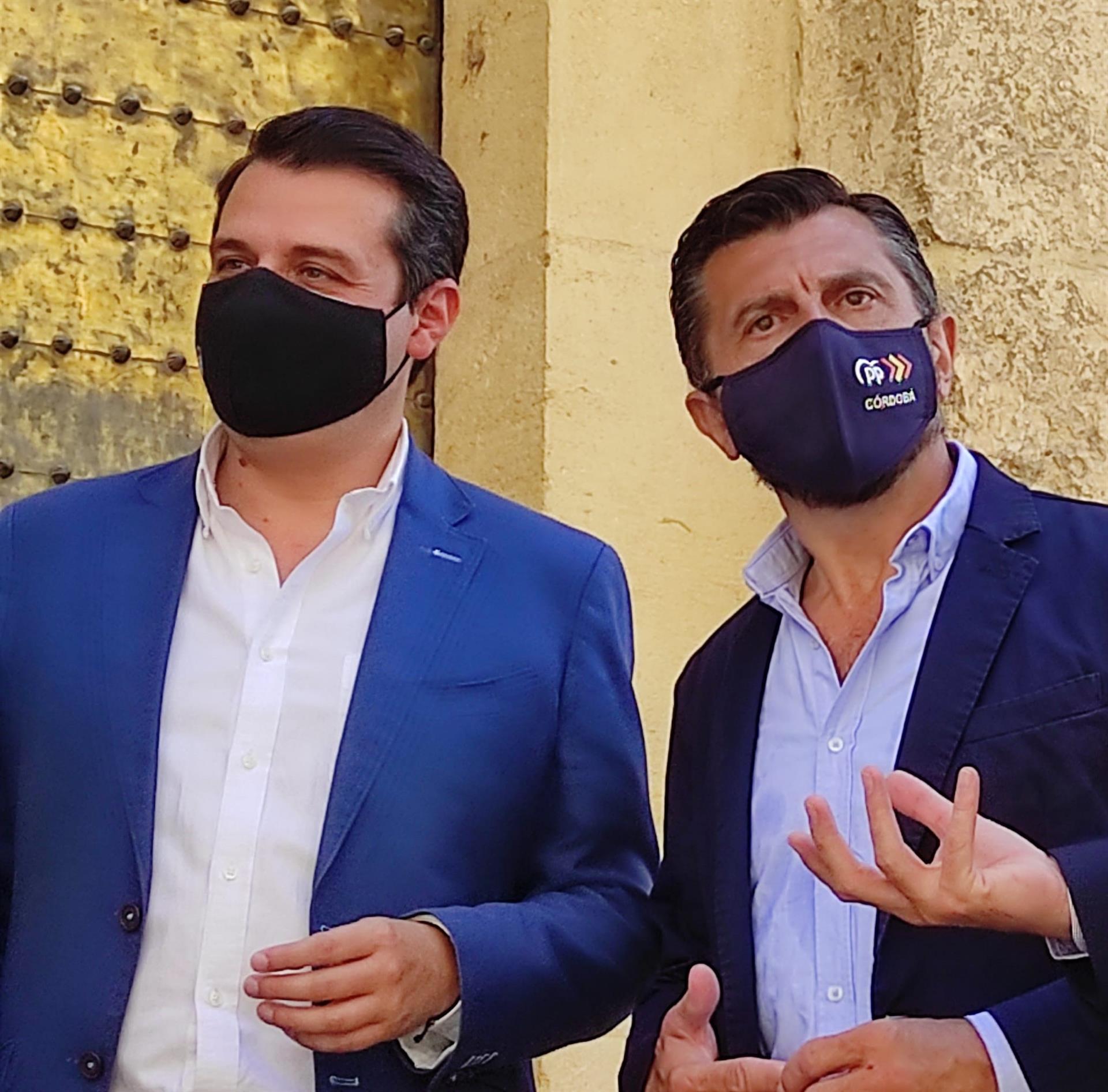 Toni Martín (PP-A) avisa que los andaluces no entenderían que Vox dejara de apoyar el «cambio en Andalucía»