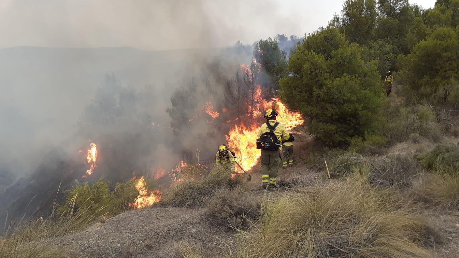 Estabilizado el fuego de Caniles donde el Infoca trabaja por tierra y aire