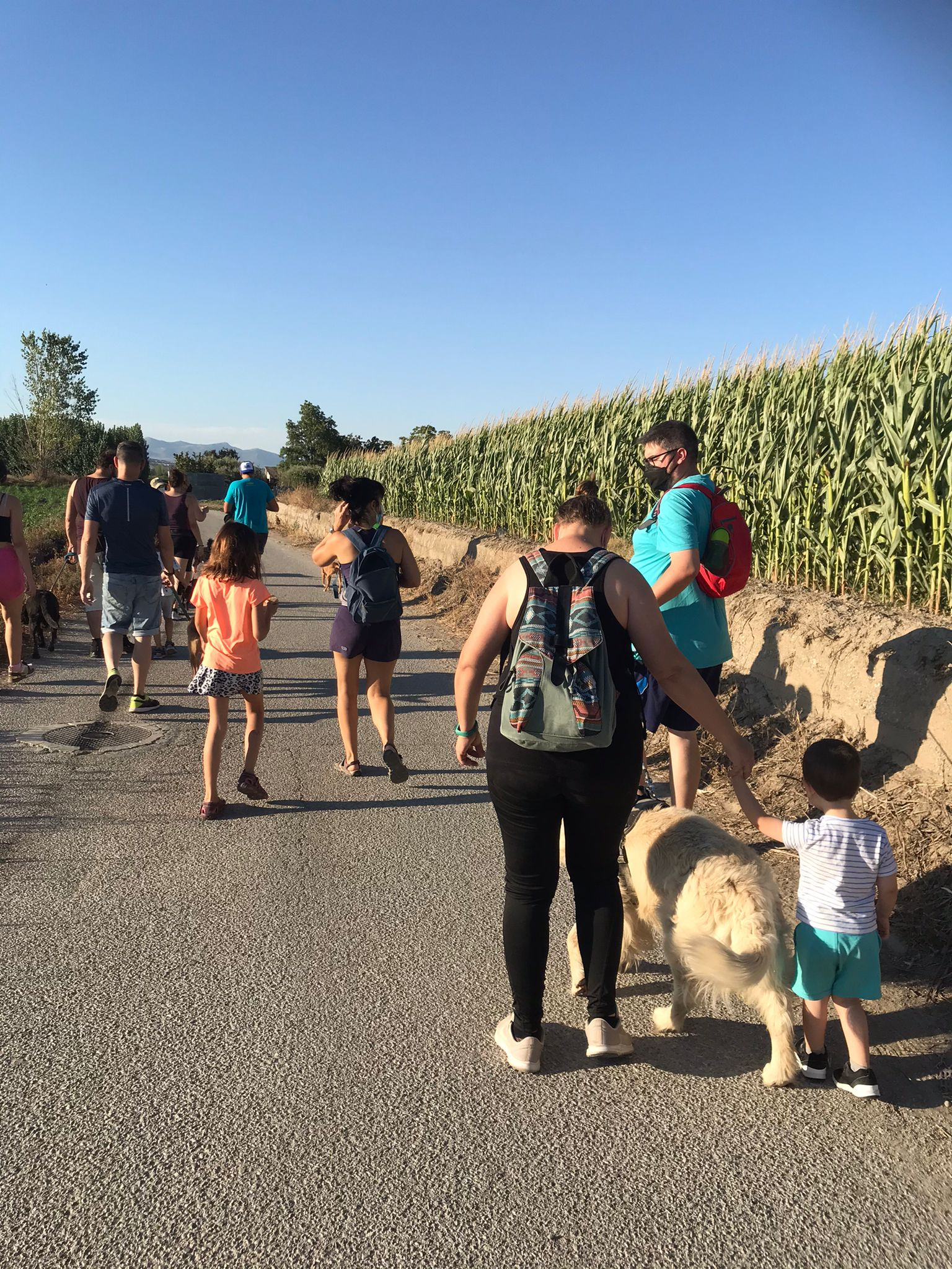 Vegas del Genil anima a sus vecinos a pasear por la Vega junto a sus perros gracias a una ruta de senderismo