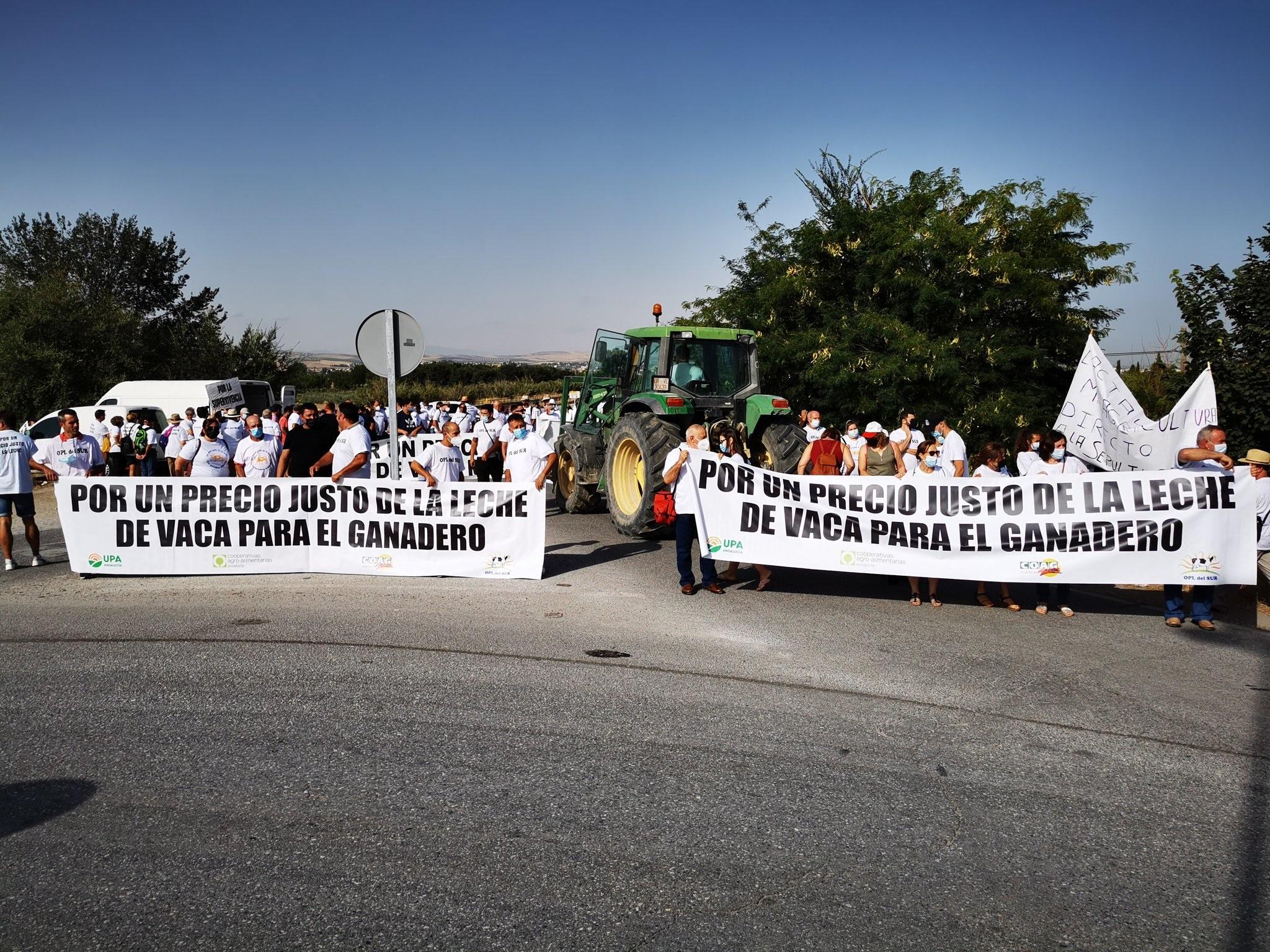 Medio millar de personas y 50 tractores apoyan a los productores por unos precios justos de la leche
