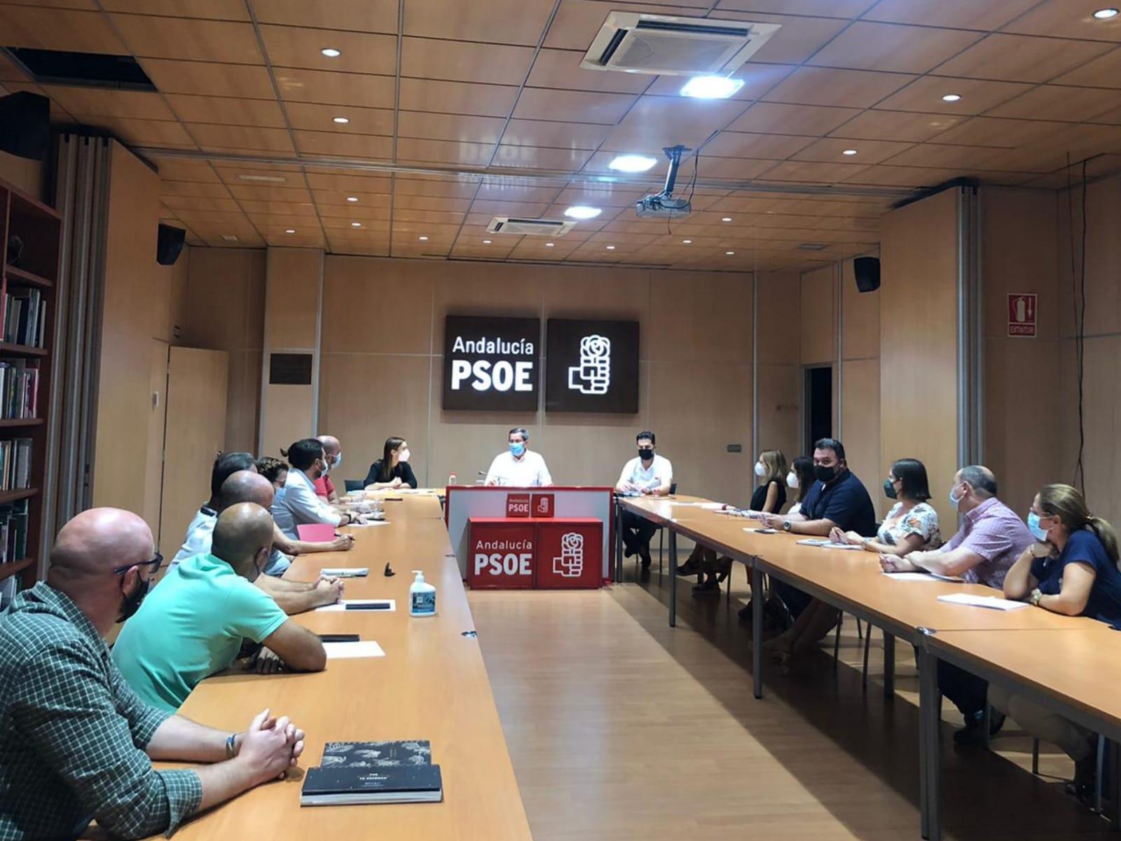 """El PSOE constituye el Grupo de Impulso para la Escucha Activa en la provincia que """"dialogará"""" con la ciudadanía"""