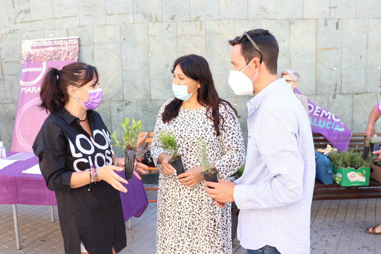 Podemos pide al Ayuntamiento de Maracena la repoblación de los alcorques vacíos en la vía pública
