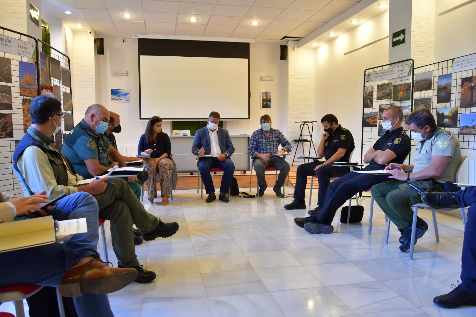 Regulada la recogida de setas en terrenos forestales de la provincia de Granada