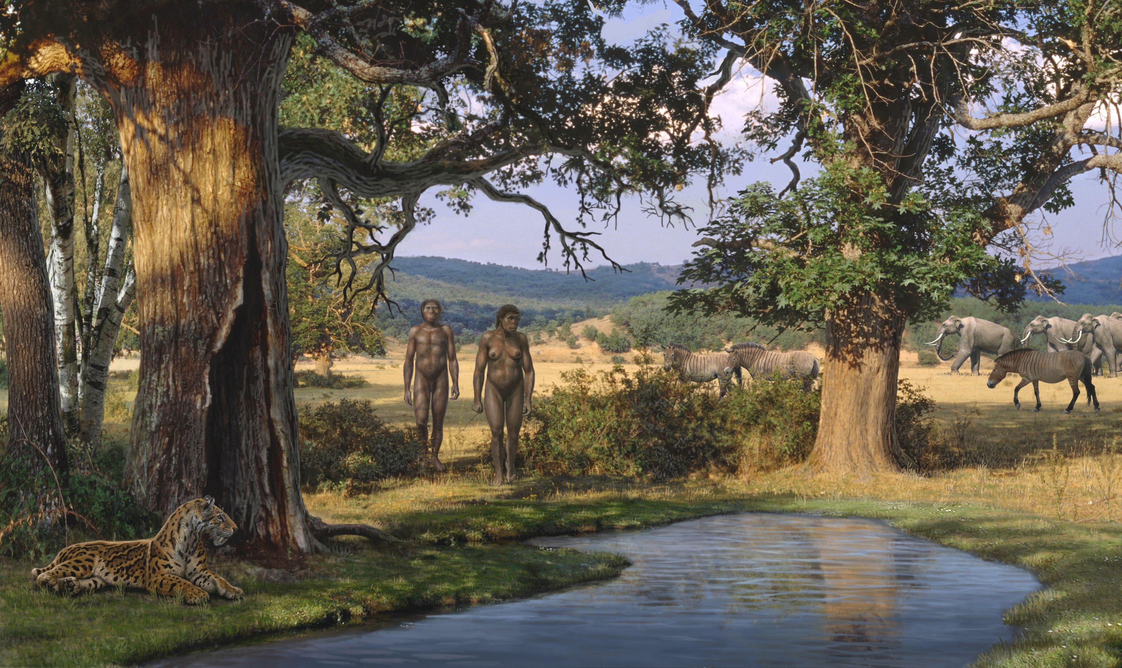 Los primeros habitantes del continente europeo, hace 1.5 millones de años, buscaban zonas con mucha vegetación para sobrevivir