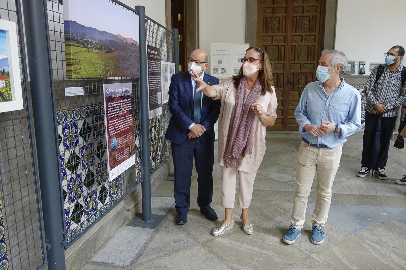 La exposición «Cambio global con mirada de artista» se expone en el patio del Ayuntamiento