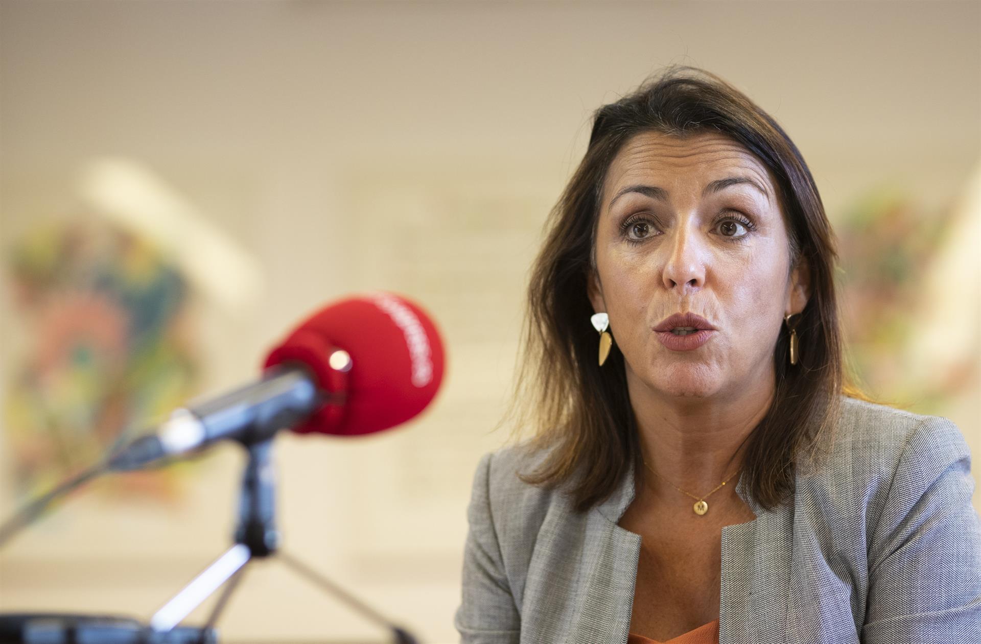 Bosquet cree que Vox, si quiere seguir «siendo útil», debería apoyar el Presupuesto y duda de que PSOE-A lo haga