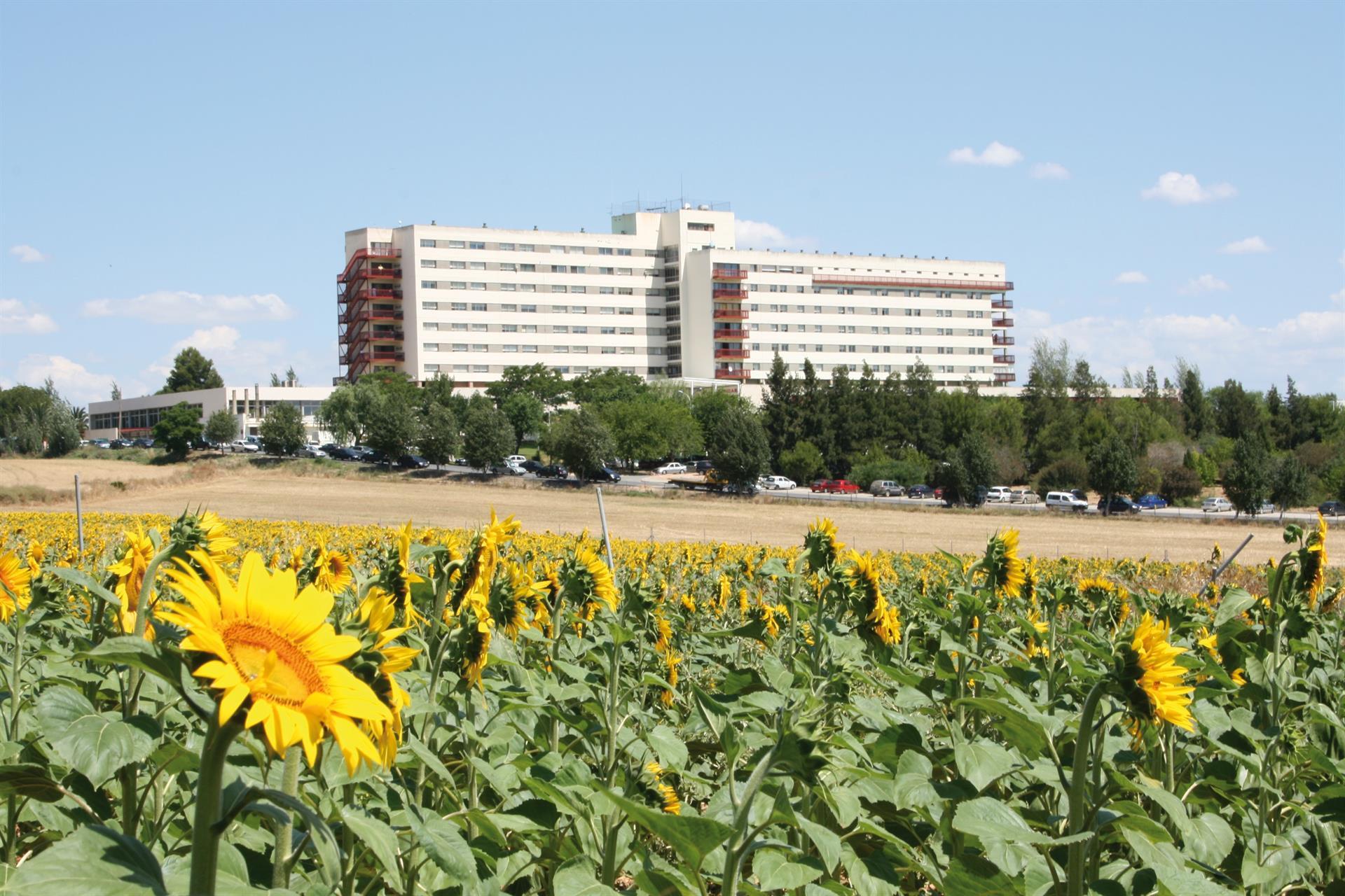 Andalucía baja 37 hospitalizados hasta 854 y mantiene los ingresados en UCI en 189