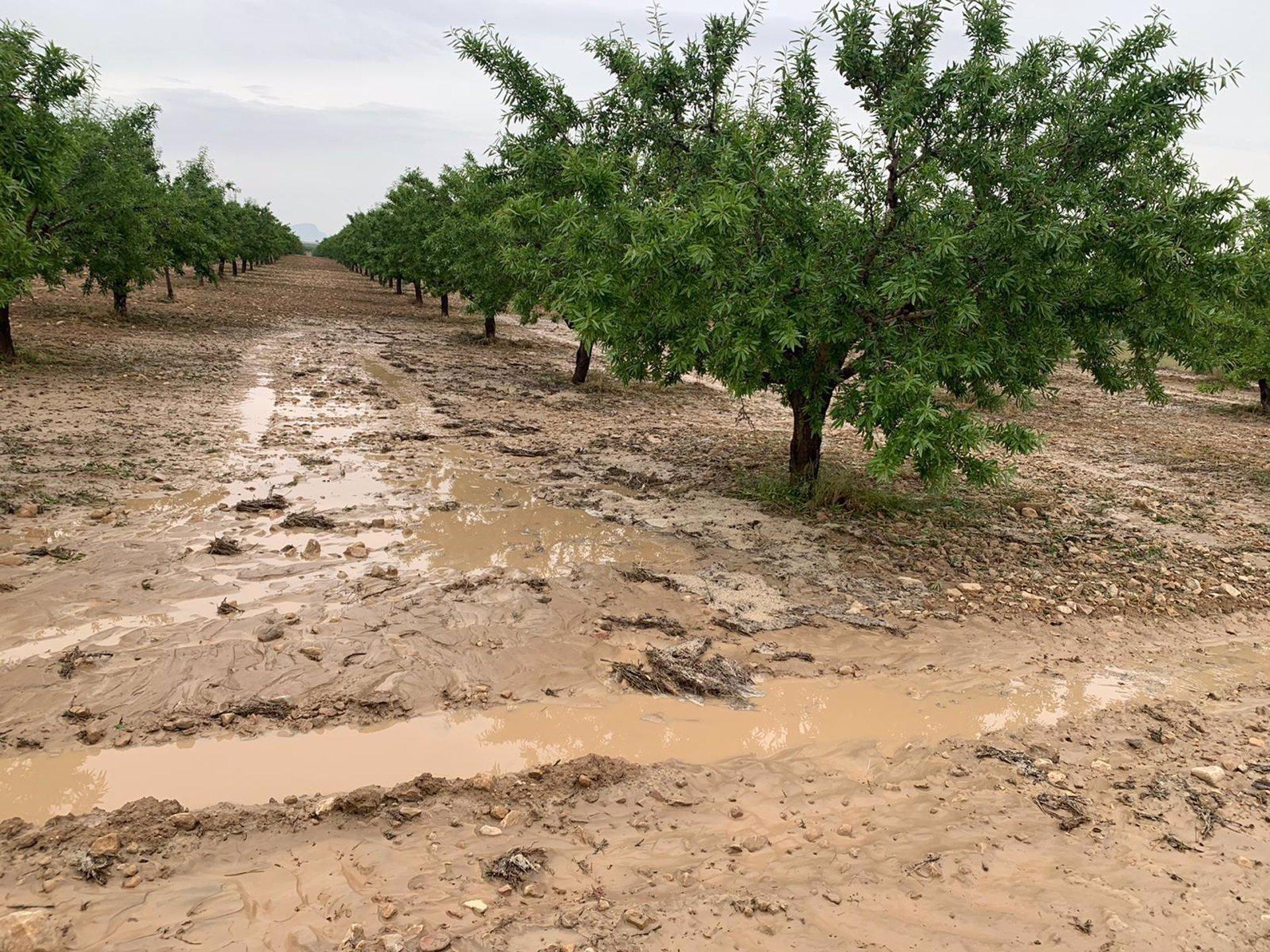 Puebla de Don Fadrique cifra daños del temporal en dos millones de euros y pide ayudas a las administraciones